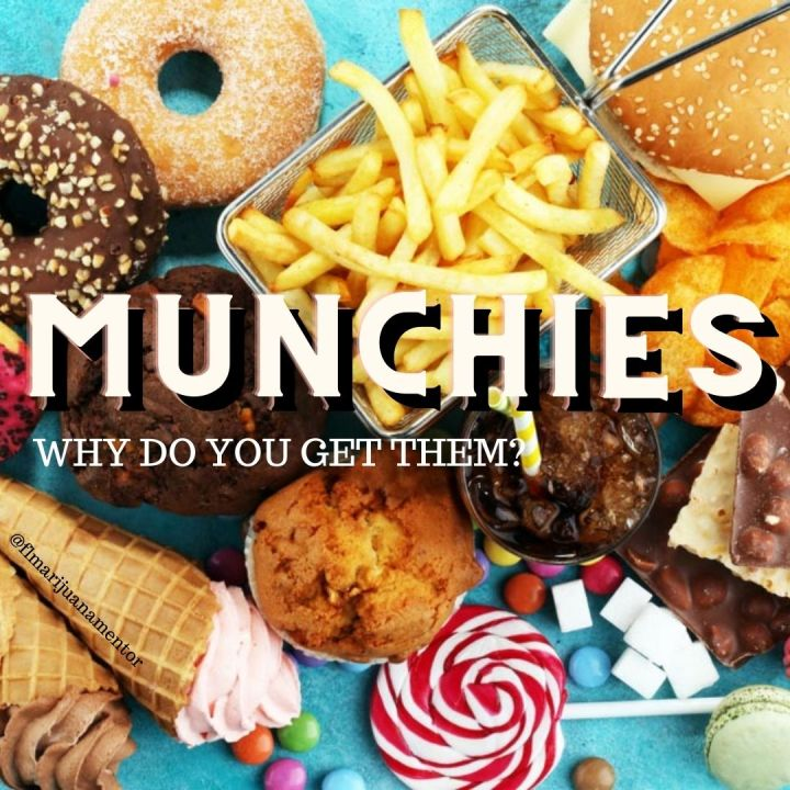 Why Do I get the Munchies?